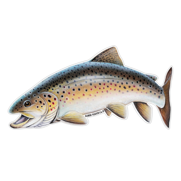 Brown Trout Fish Decals Amp Stickers For Car Truck Or Boat