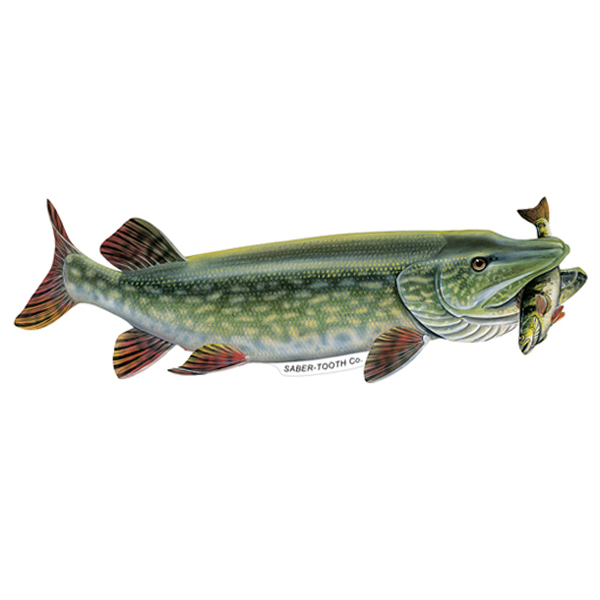 Northern Pike With Perch Fish Decals And Stickers Saber