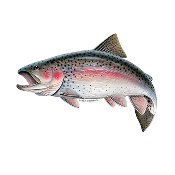 Rainbow trout fish decals stickers saber tooth co for How to fish for rainbow trout