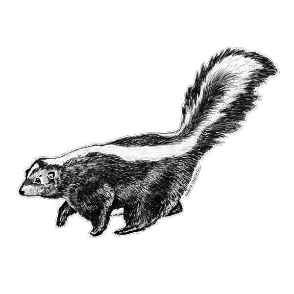 Skunk Wildlife Silhouette Decals Saber Tooth Co