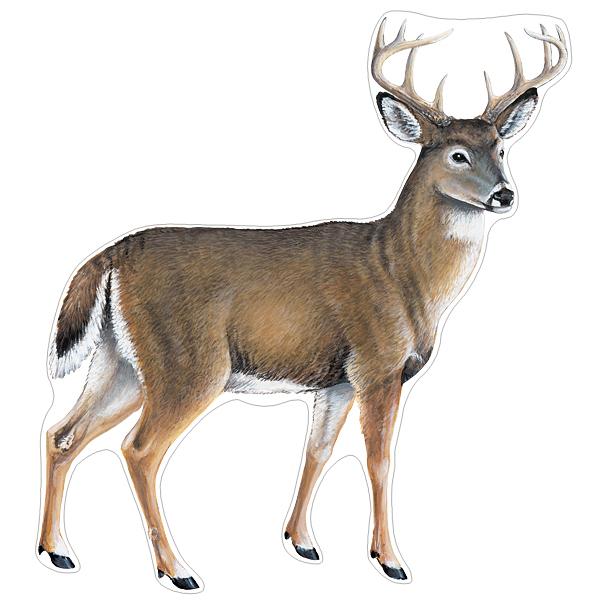 Buck Deer Wildlife Decals Saber Tooth Co