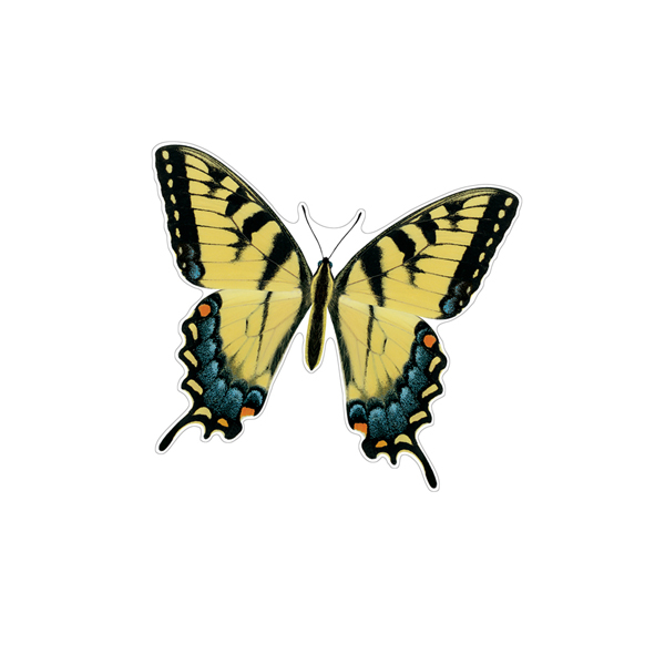 Eastern Tiger Swallowtail Butterfly Decals Saber Tooth Co